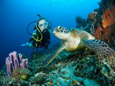 Scuba Diving in Diani Beach